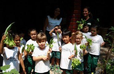 Crianças na horta da escola